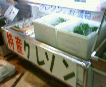 2011_7_23 011